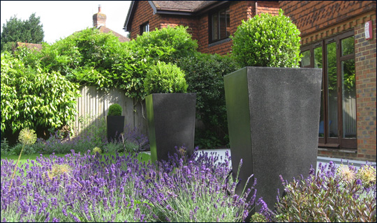 Accent Garden Design in Woking, Surrey | Formal Front Garden in Woking